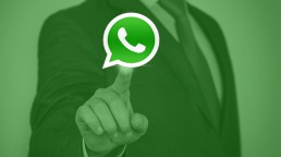 whatsapp para marketing digital