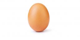 world record egg instagram huevo