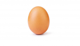 world record egg instagram huevo